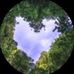 Trauer und Liebe in Taunusstein